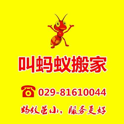 西安叫蚂蚁货物运输有限公司
