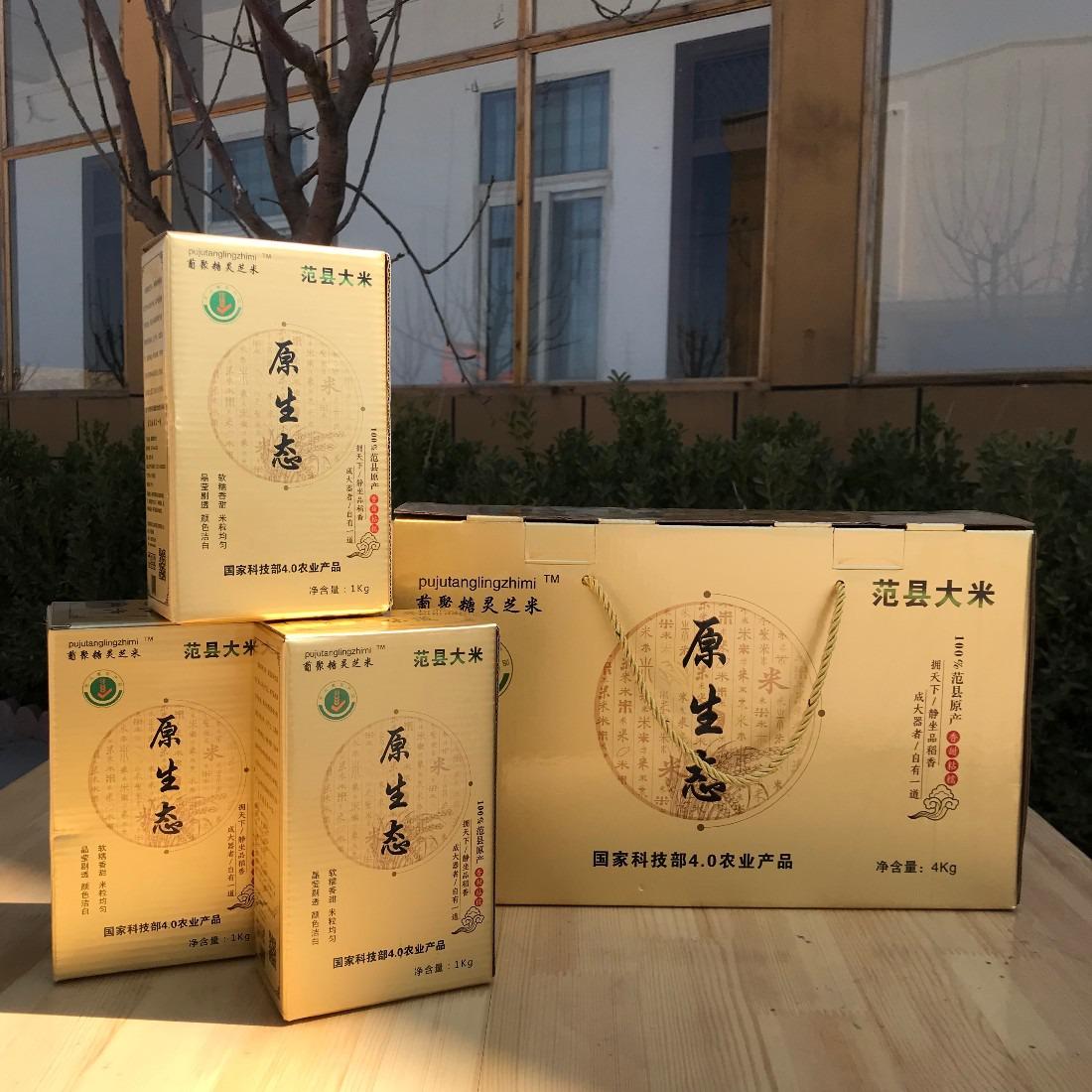 米线厂专用特级绿色大米范县庆丰厂