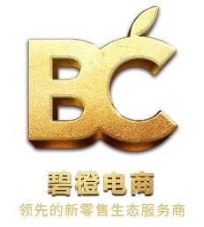 杭州碧橙網絡技術有限公司
