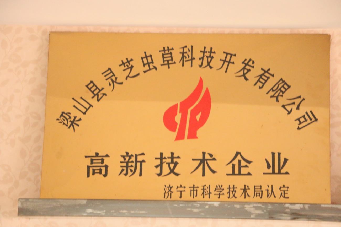 山东瑞芝生物科技股份有限公司