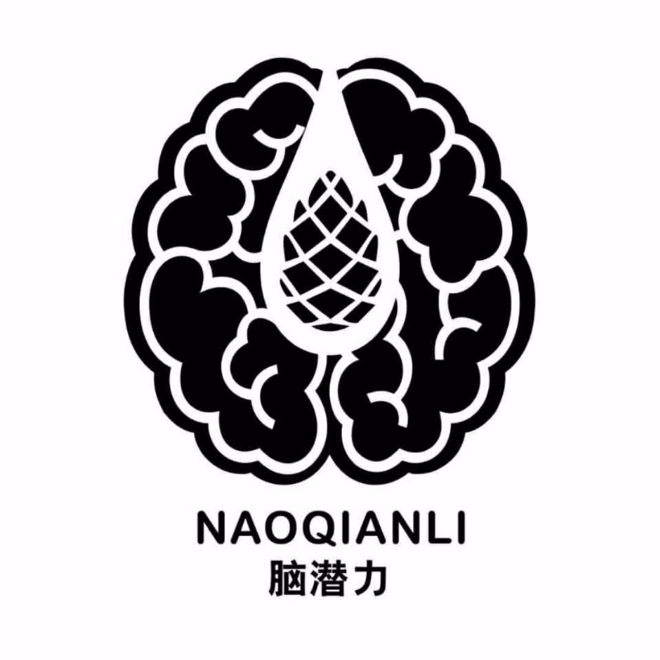 深圳领慧智能教育有限公司