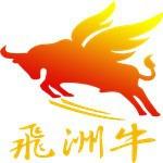 深圳市飞州牛实业有限公司