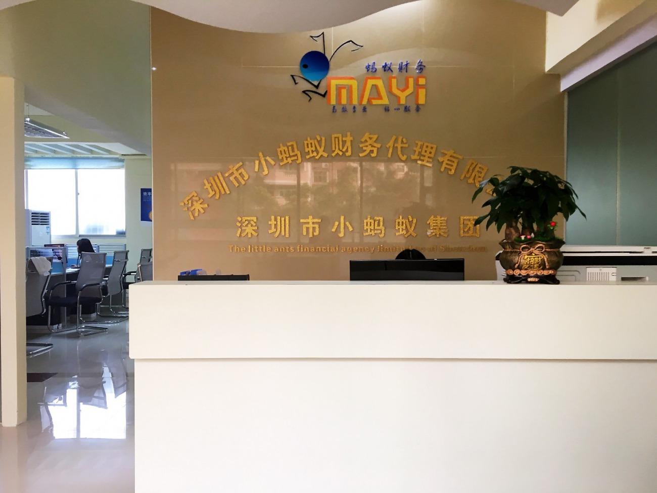 深圳市小螞蟻財務代理有限公司