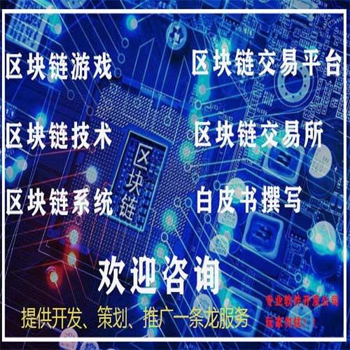 陈佳敏软件开发