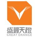 上海盛視天橙傳媒股份有限公司