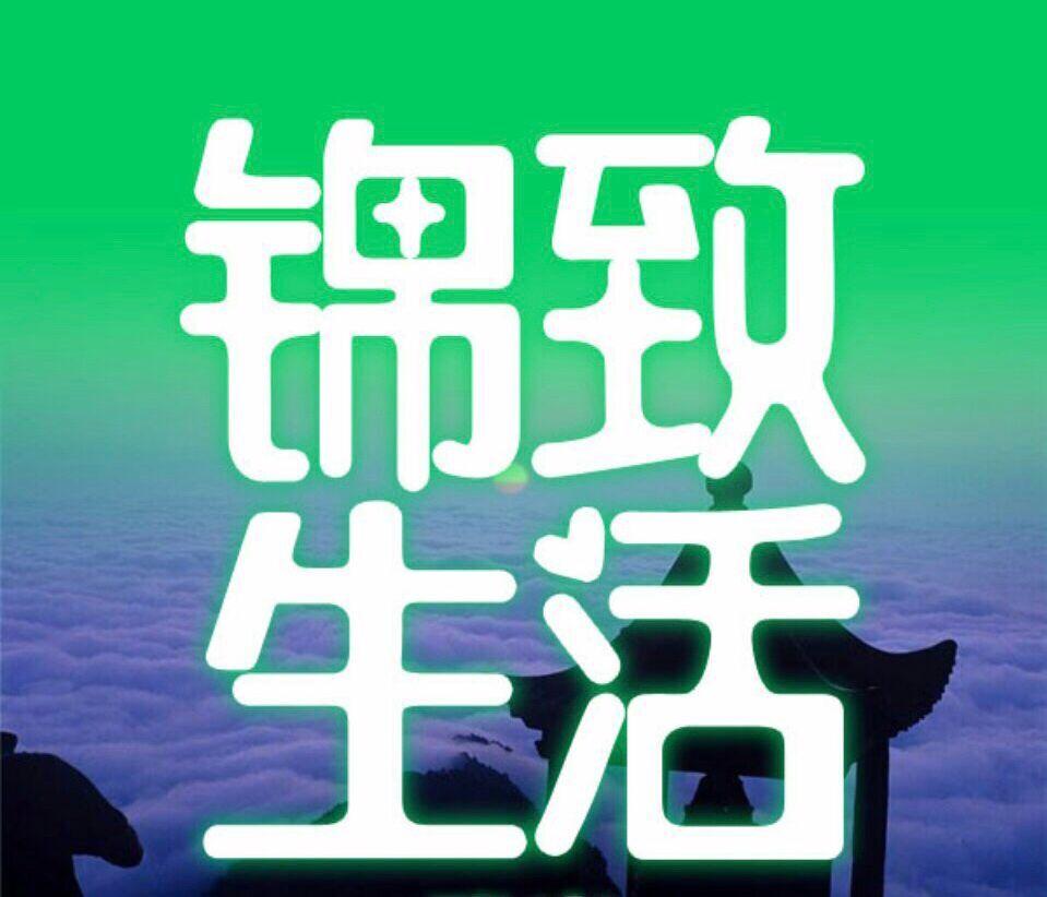 湖南錦致生和網絡科技有限公司