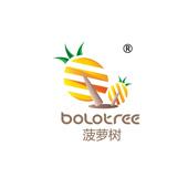 菠萝树(深圳)科教有限公司