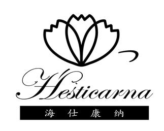 深圳海仕康納科技有限公司