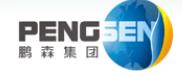深圳鵬森投資集團有限公司