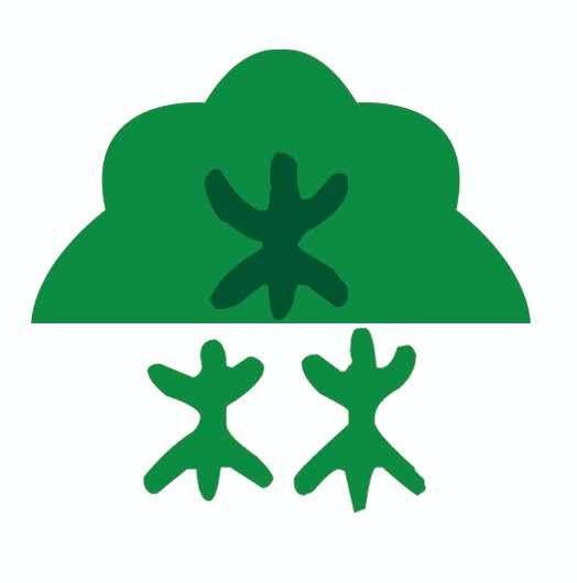 壽光市木森林林業有限公司