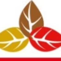 深圳市四季行汽車服務有限公司