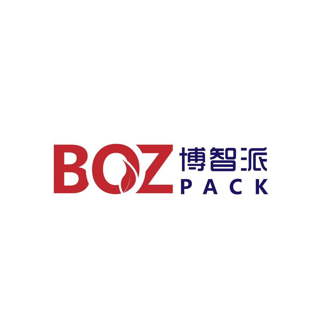 深圳市博智派科技有限公司