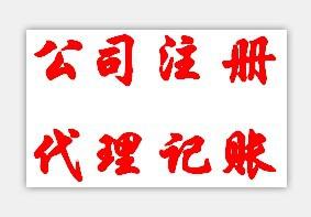上海百統投資有限公司