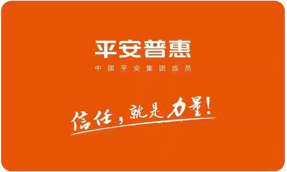 平安普惠信息服務有限公司嘉興文昌路分公司