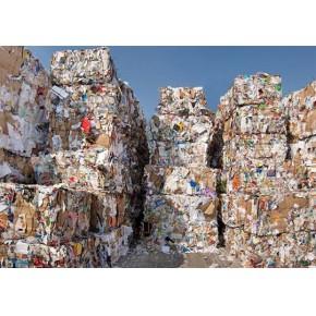 供应无锡地区廢紙300吨