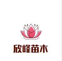 松滋市欣峰苗木種植基地