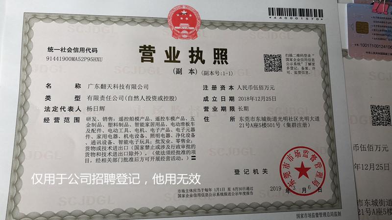 廣東翻天科技有限公司