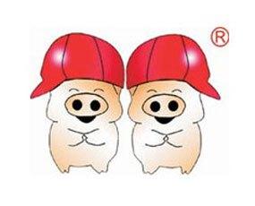 阜宁双胞胎畜牧有限公司