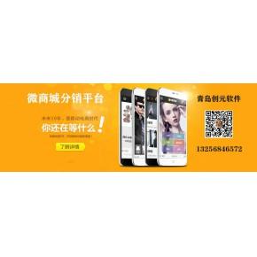 济南淄博分销商城小程序开发