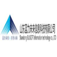 山东蓝力未来信息科技有限公司
