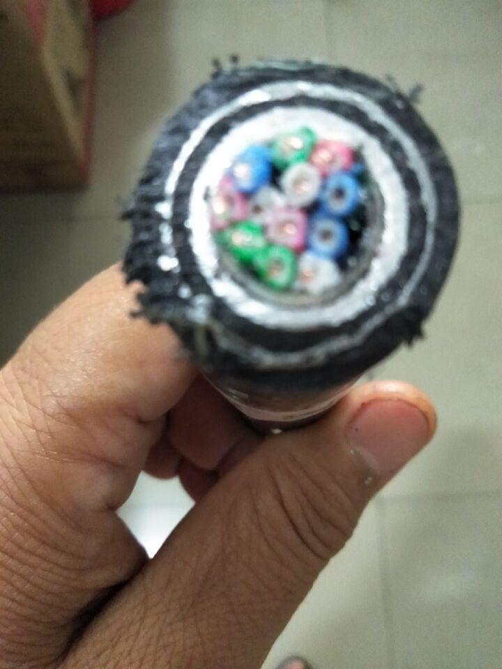 PTYLH23天津鋁護套電纜48X1