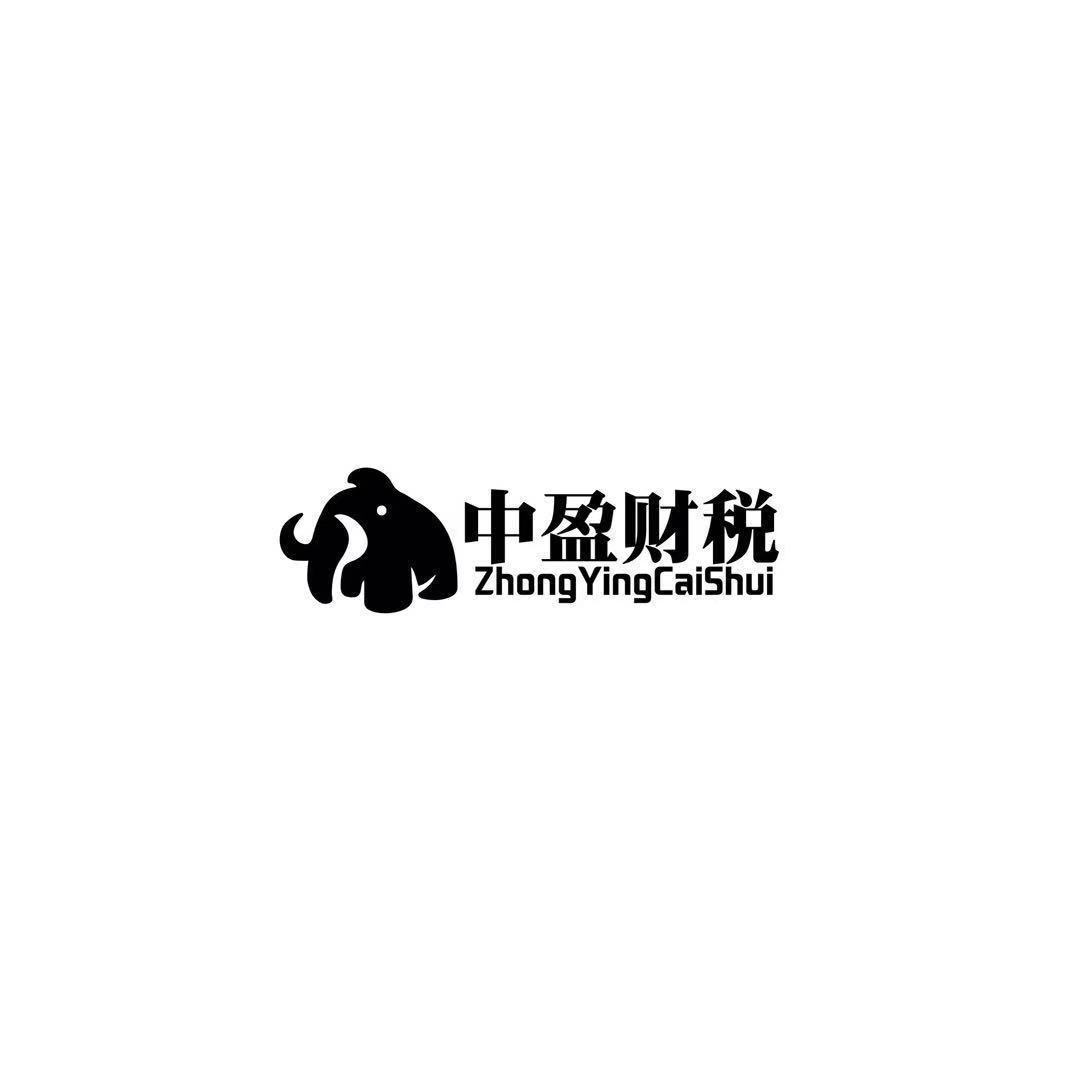 济南中盈代理记账有限公司