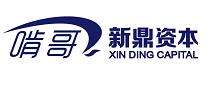 北京新鼎榮盛資本管理有限公司