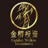 上海金柳投資管理有限公司
