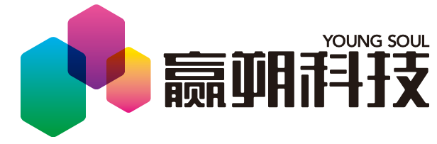 上海贏朔電子科技股份有限公司
