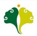 邳州市志威銀杏苗木種植專業合作社