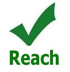 插座REACH认证多少天办理下来插图