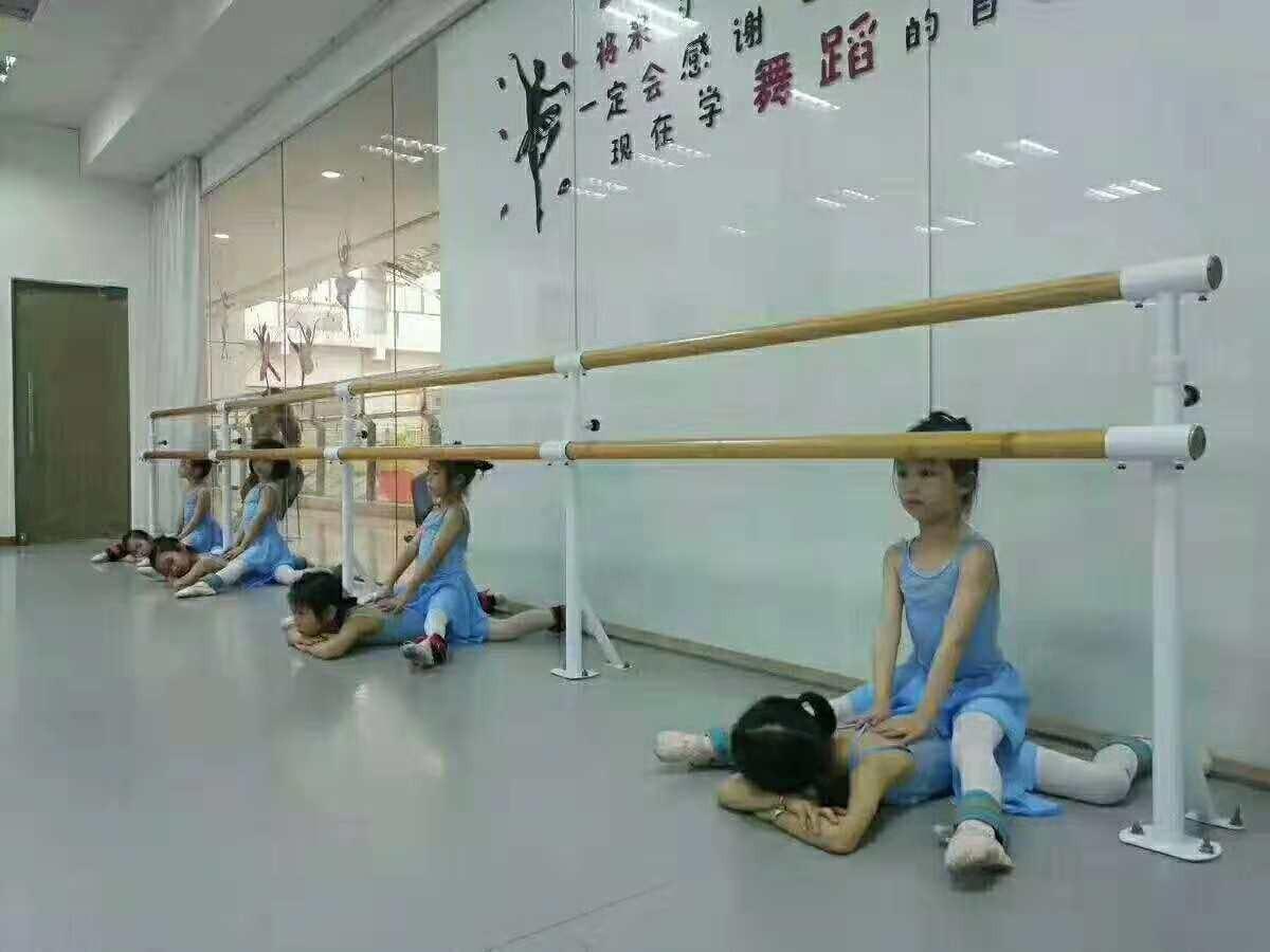 舞蹈把桿批發 江西吉安舞蹈把桿廠家價格