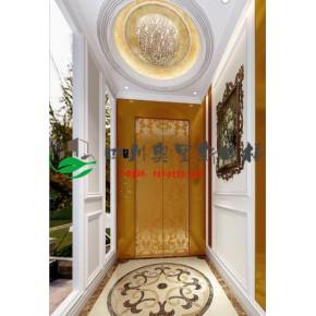 重庆定制家用电梯,别墅电梯的厂家安装报价