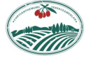 寧夏菊花臺莊園枸杞種植有限公司