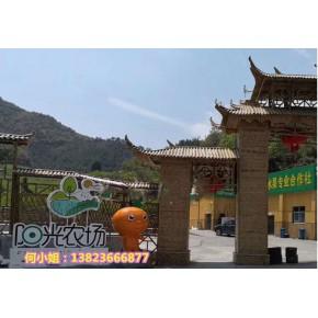 农科技博览园景观橘子沃柑卡通公仔塑像形象曝光,震惊所有人