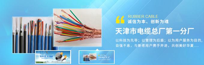 天津電纜總廠第一分廠