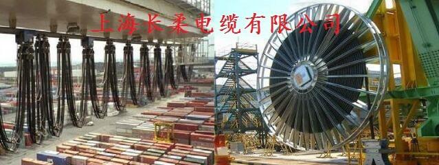 上海長柔電纜有限公司